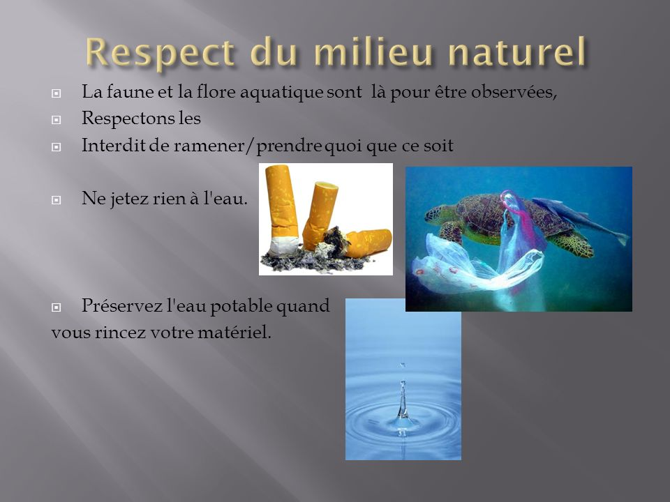 Respect du milieu naturel