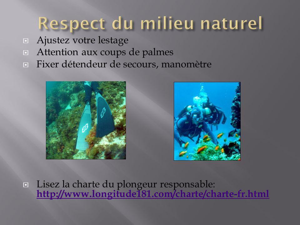 Respect du milieu naturel