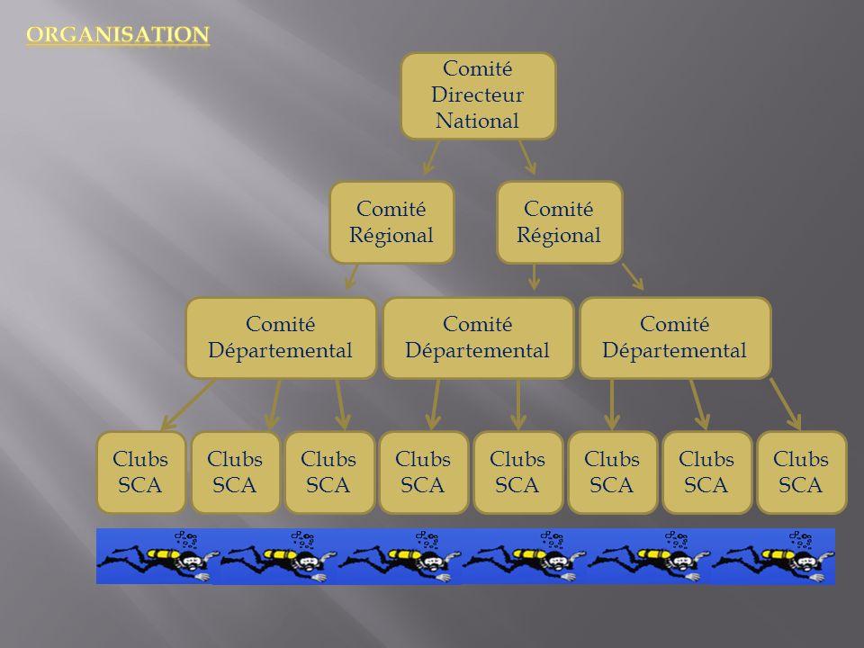 Comité Directeur National