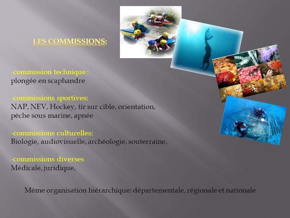Les commissions: -commission technique : plongée en scaphandre. -commissions sportives: NAP, NEV, Hockey, tir sur cible, orientation,