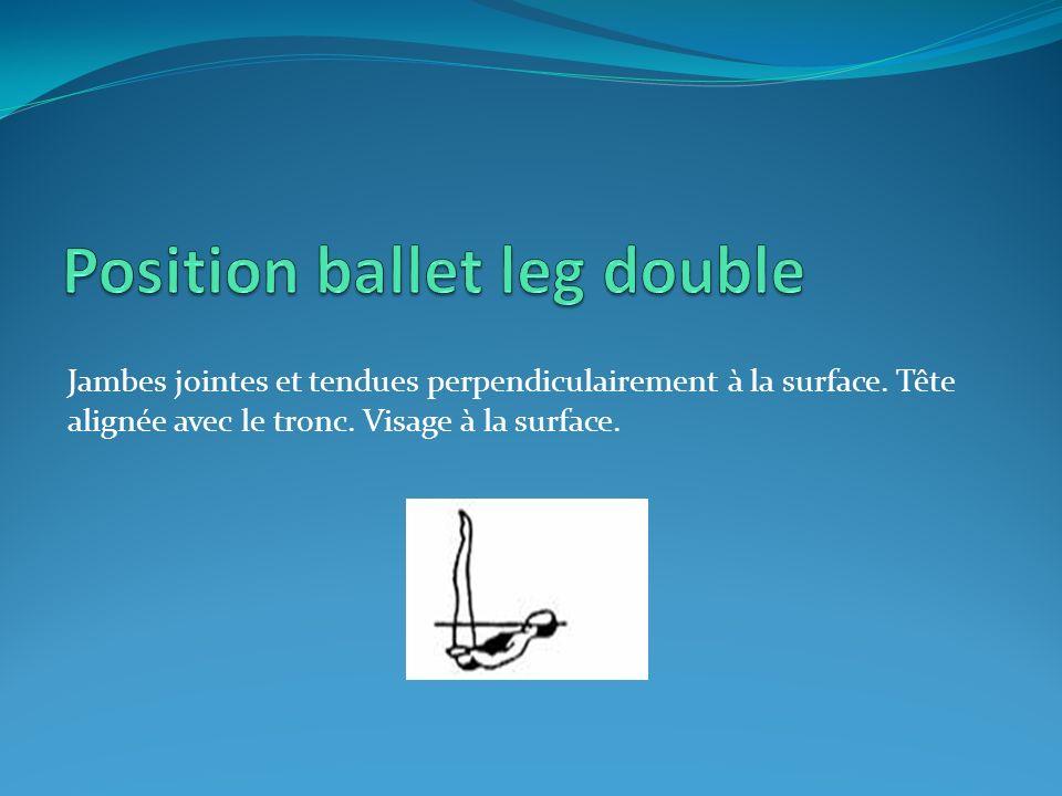 Position ballet leg double
