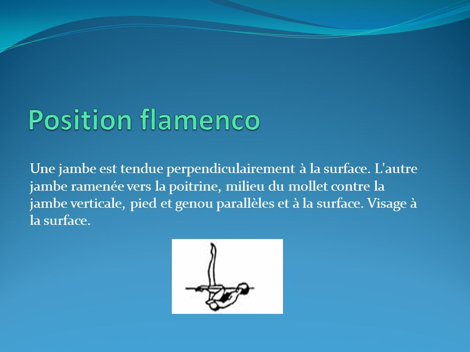 Position flamenco