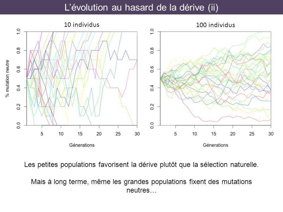 L'évolution au hasard de la dérive (ii)