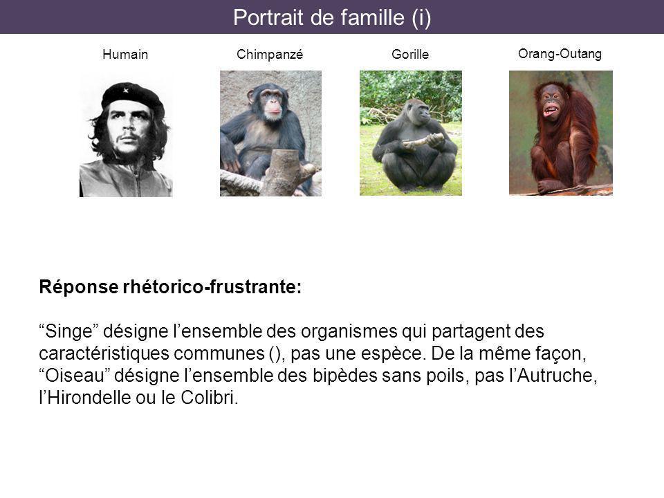 Portrait de famille (i)