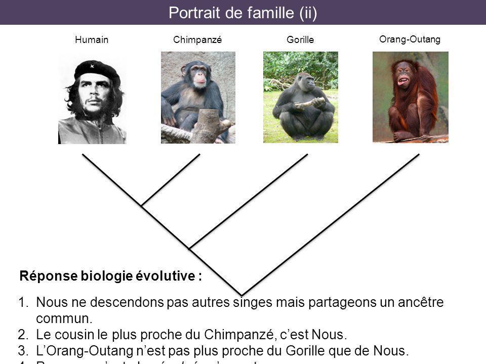 Portrait de famille (ii)