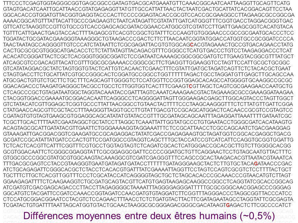Différences moyennes entre deux êtres humains (~0,5%)