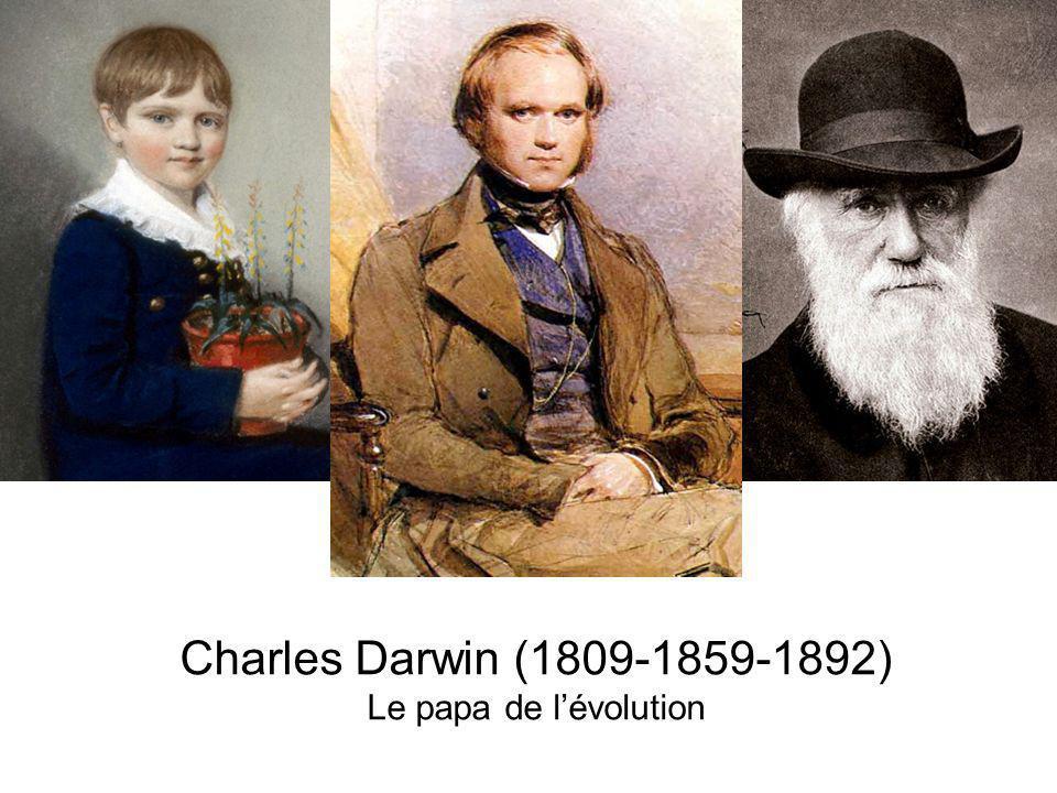 Charles Darwin (1809-1859-1892) Le papa de l'évolution