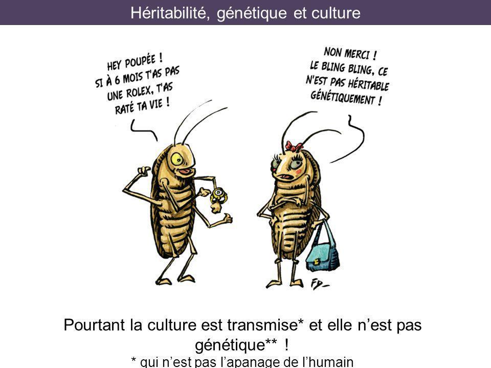 Héritabilité, génétique et culture
