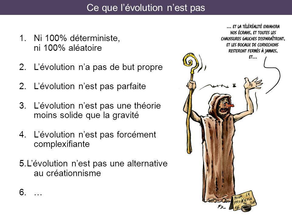 Ce que l'évolution n'est pas