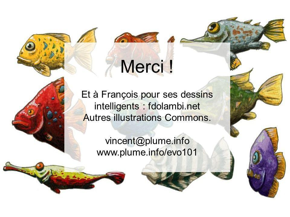 Merci ! Et à François pour ses dessins intelligents : fdolambi.net