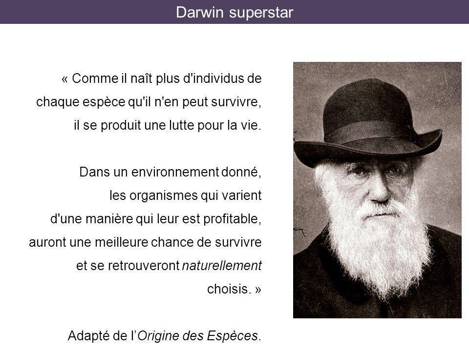 Darwin superstar « Comme il naît plus d individus de chaque espèce qu il n en peut survivre, il se produit une lutte pour la vie.