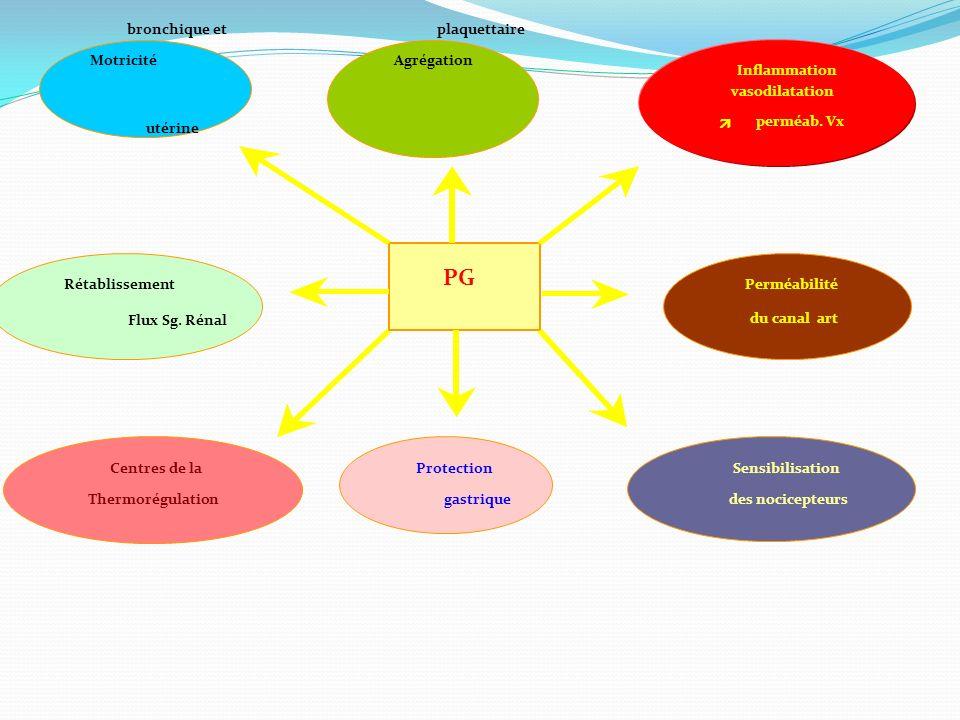 PG Agrégation Motricité Inflammation plaquettaire bronchique et