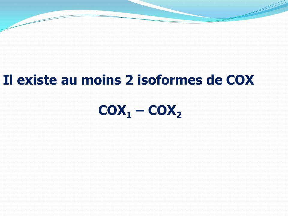 Il existe au moins 2 isoformes de COX COX1 – COX2