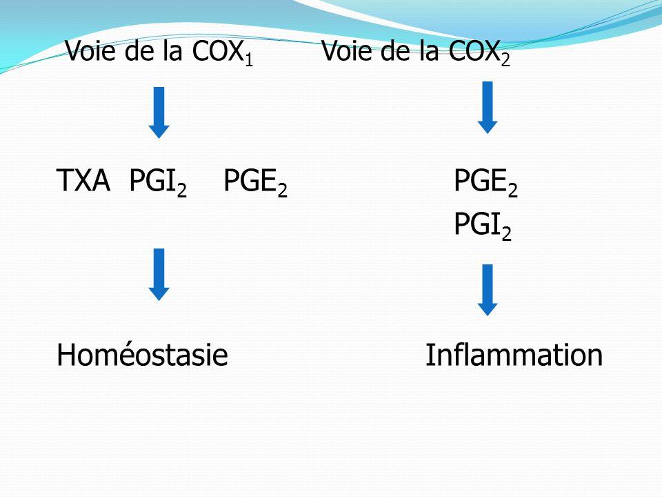 Homéostasie Inflammation