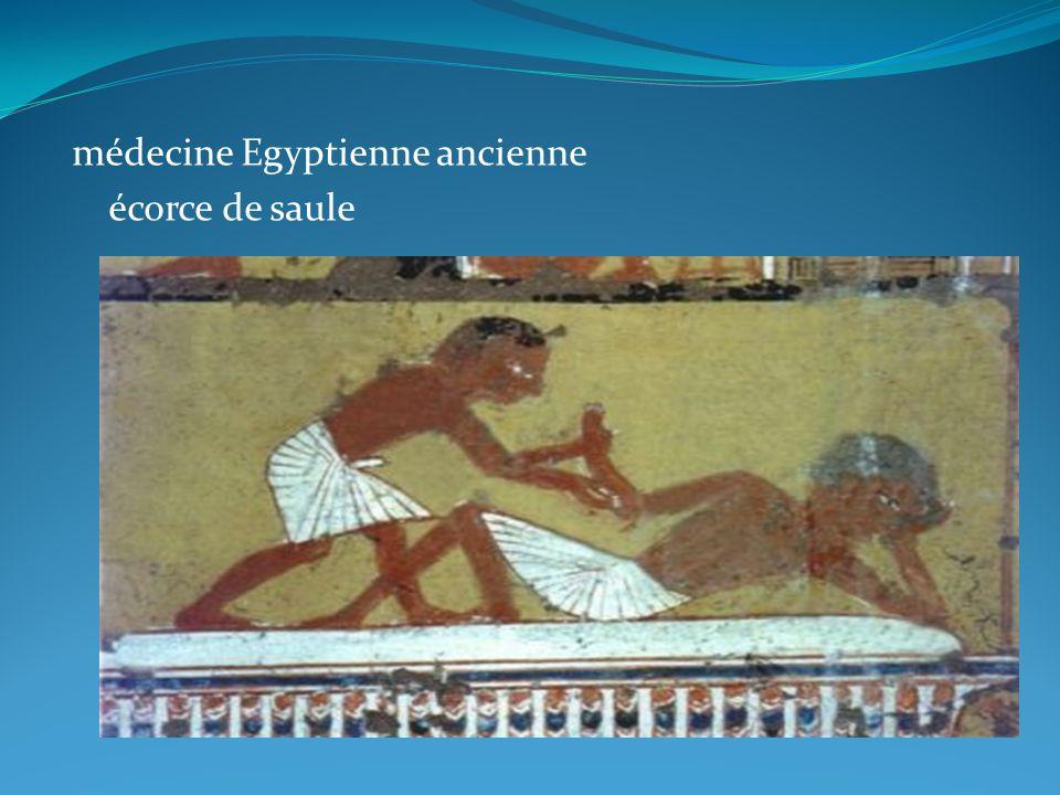 médecine Egyptienne ancienne écorce de saule