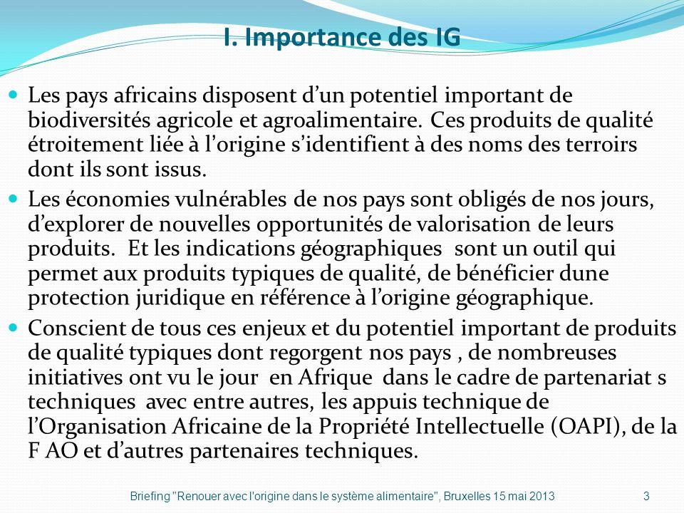 I. Importance des IG