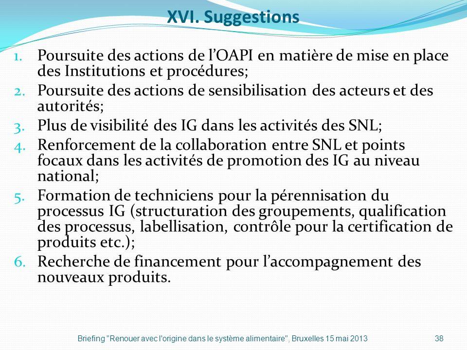 XVI. Suggestions Poursuite des actions de l'OAPI en matière de mise en place des Institutions et procédures;