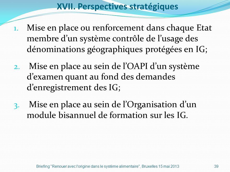 XVII. Perspectives stratégiques