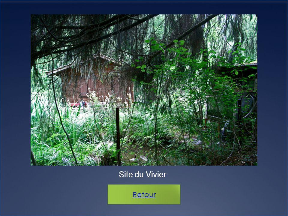 Site du Vivier Retour