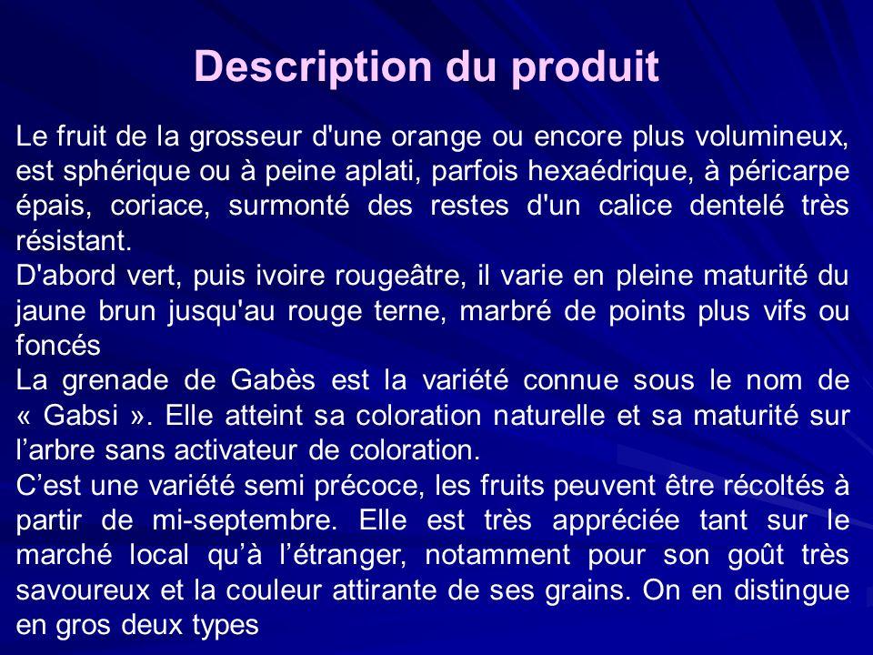 Description du produit