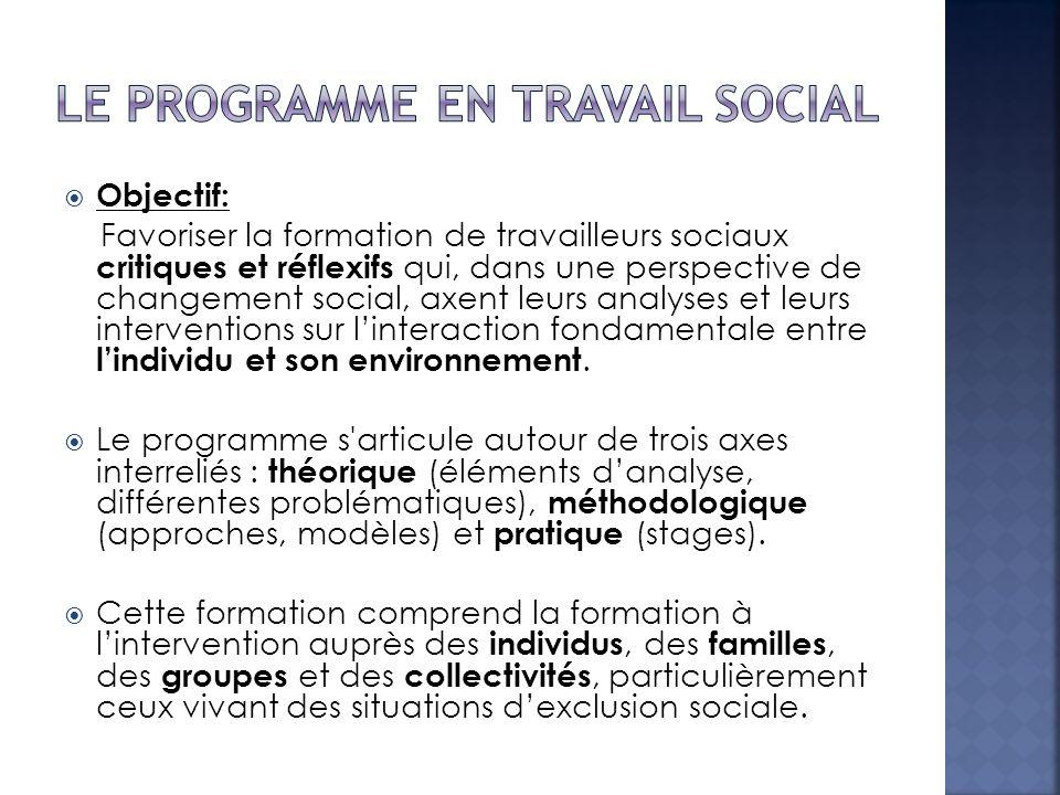 Le programme en travail social