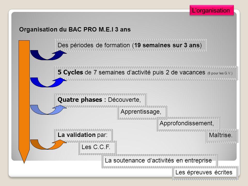 L'organisation Organisation du BAC PRO M.E.I 3 ans. Des périodes de formation (19 semaines sur 3 ans)