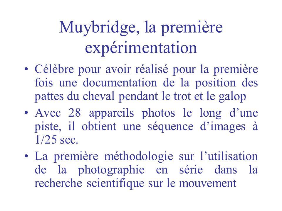 Muybridge, la première expérimentation