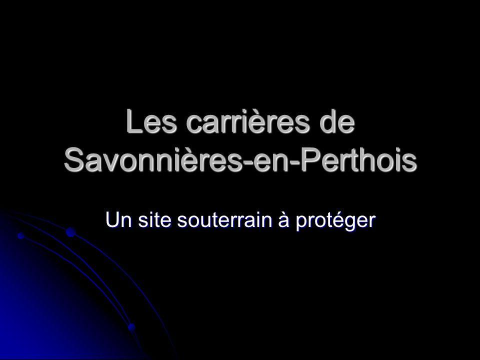 Les carrières de Savonnières-en-Perthois
