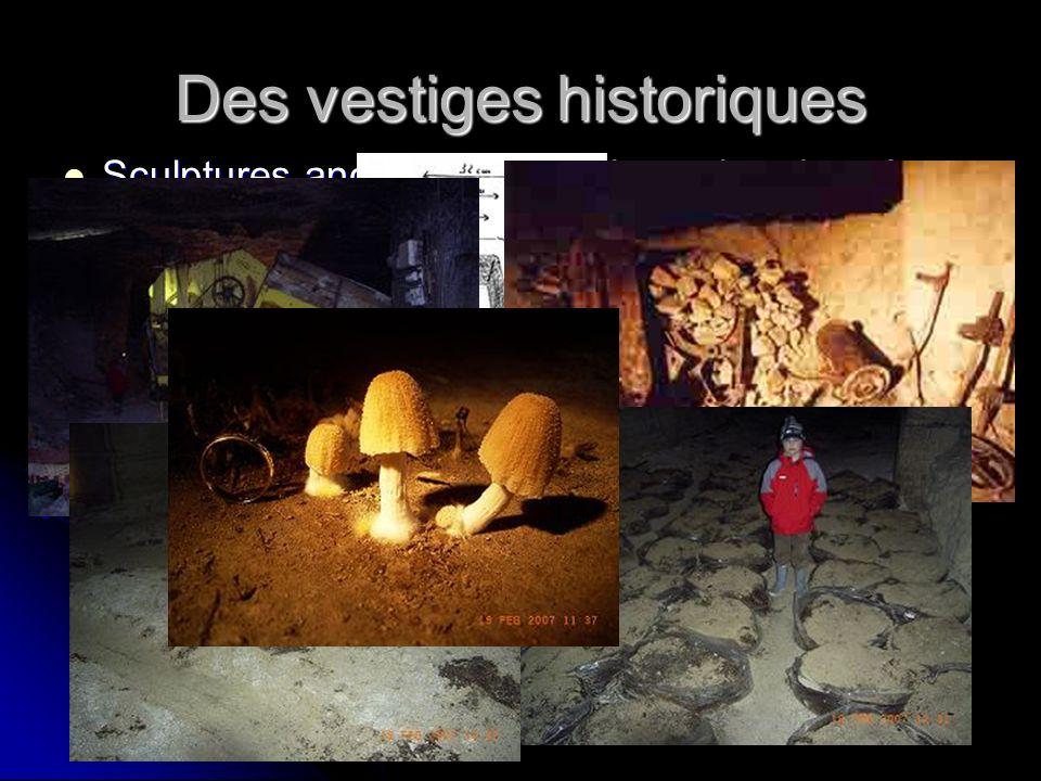 Des vestiges historiques