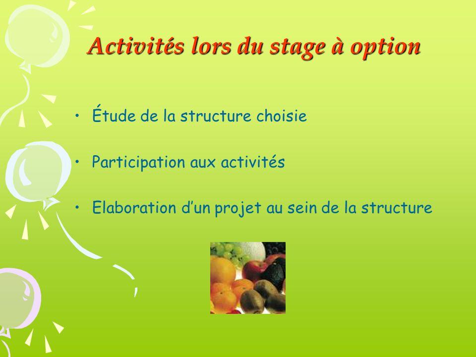 Activités lors du stage à option