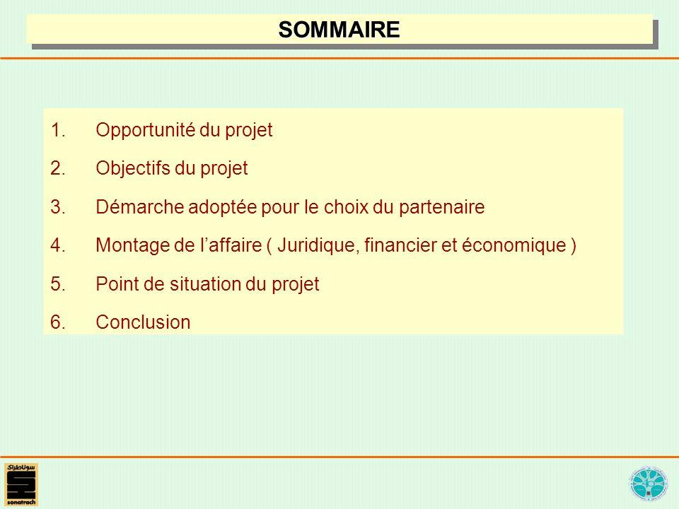 SOMMAIRE Opportunité du projet Objectifs du projet