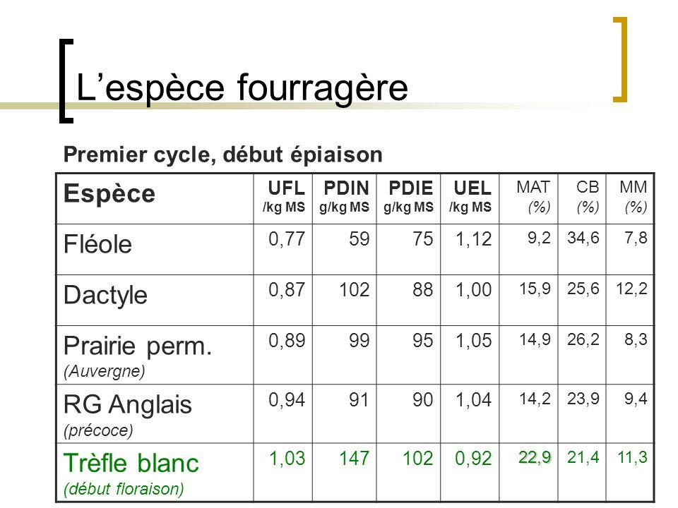 L'espèce fourragère Espèce Fléole Dactyle Prairie perm. (Auvergne)