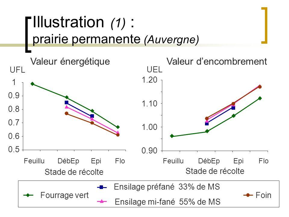 Illustration (1) : prairie permanente (Auvergne)