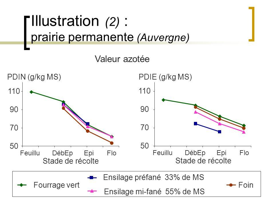 Illustration (2) : prairie permanente (Auvergne)