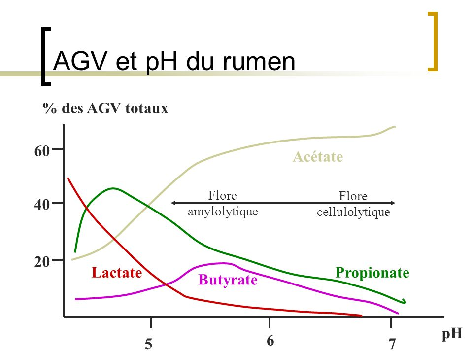 AGV et pH du rumen Acétate Lactate Butyrate Propionate