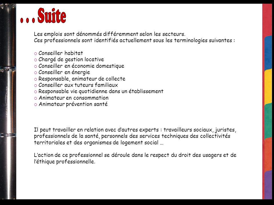 . . . Suite Les emplois sont dénommés différemment selon les secteurs.