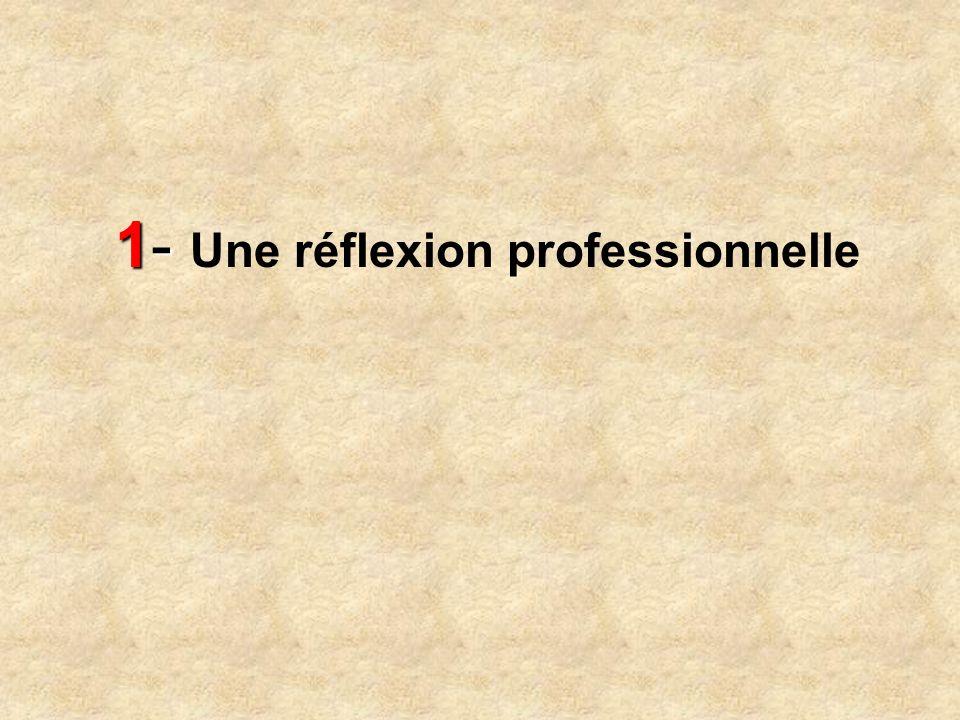1- Une réflexion professionnelle