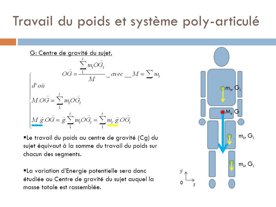 Travail du poids et système poly-articulé