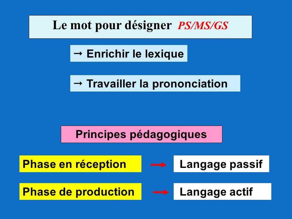 Le mot pour désigner PS/MS/GS Principes pédagogiques