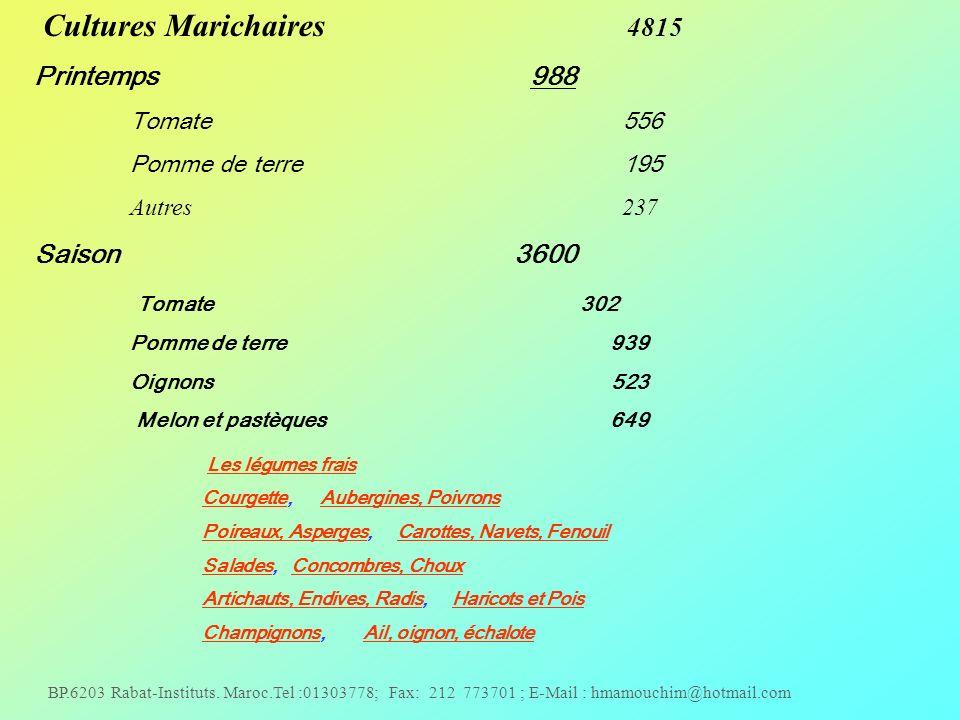 Cultures Marichaires 4815 Printemps 988 Saison 3600 Tomate 302