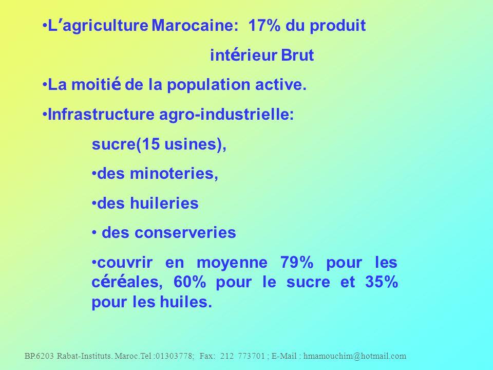 L'agriculture Marocaine: 17% du produit intérieur Brut