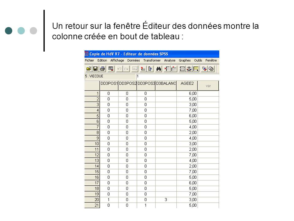 Un retour sur la fenêtre Éditeur des données montre la colonne créée en bout de tableau :