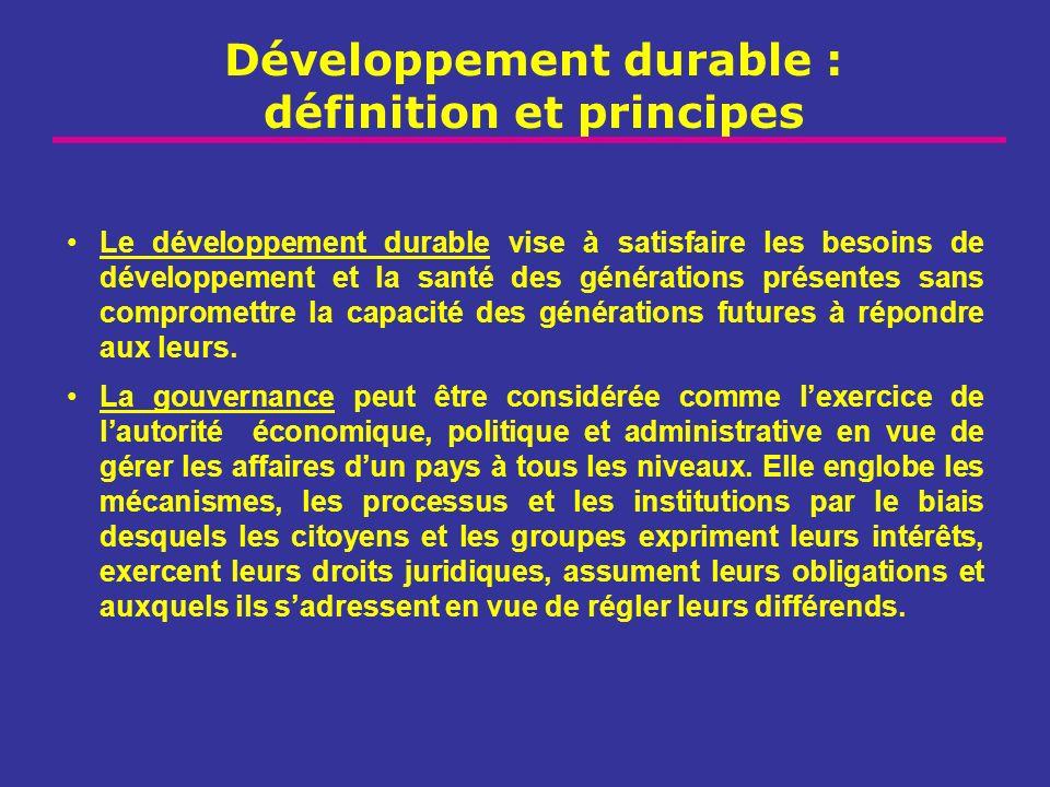 Développement durable : définition et principes