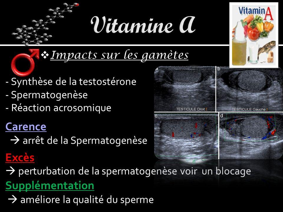 Vitamine A Carence Excès Supplémentation Impacts sur les gamètes