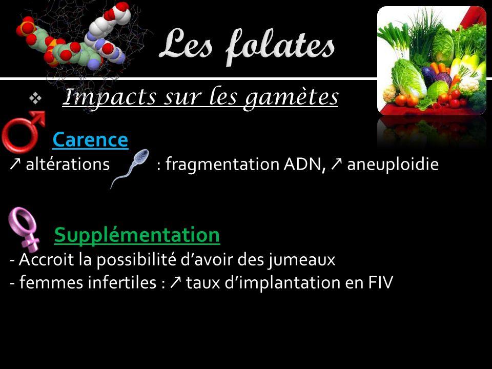 Les folates Carence Supplémentation Impacts sur les gamètes