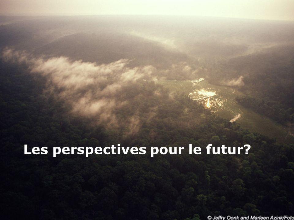 Les perspectives pour le futur