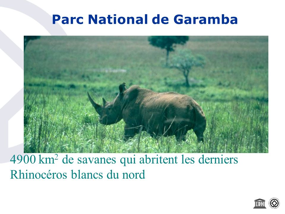 Parc National de Garamba