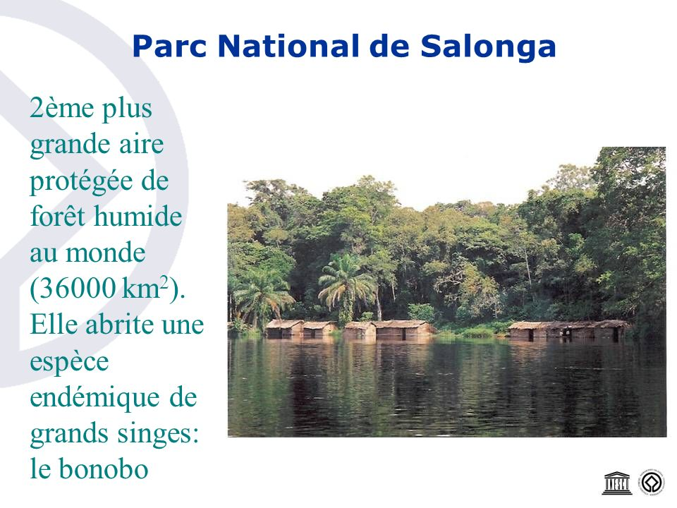 Parc National de Salonga