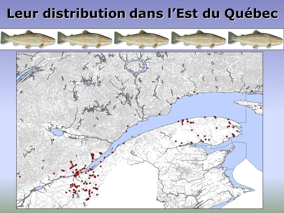 Leur distribution dans l'Est du Québec