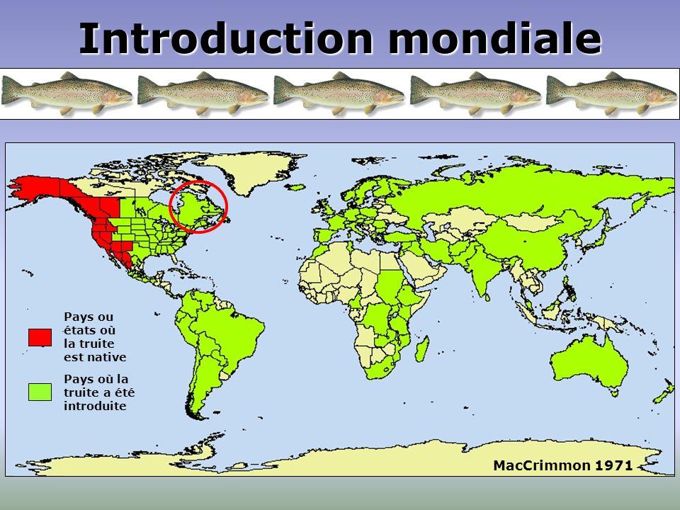 Introduction mondiale